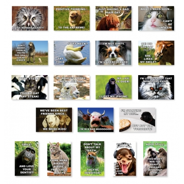 Funny Animals Set of 20