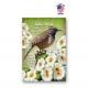 Alaska Bird & Flower Set of 20