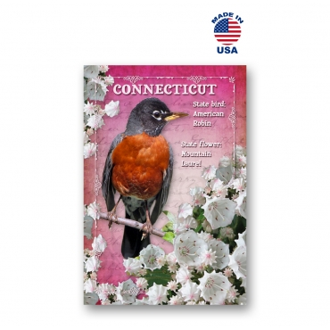 Connecticut Bird & Flower Set of 20