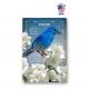 Georgia Bird & Flower Set of 20