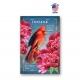 Idaho Bird & Flower Set of 20