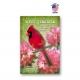 Washington Bird & Flower Set of 20