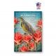 Wisconsin Bird & Flower Set of 20